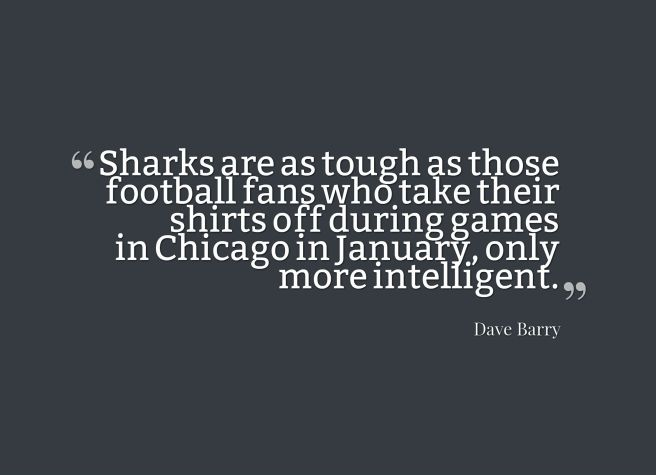 sharks quote