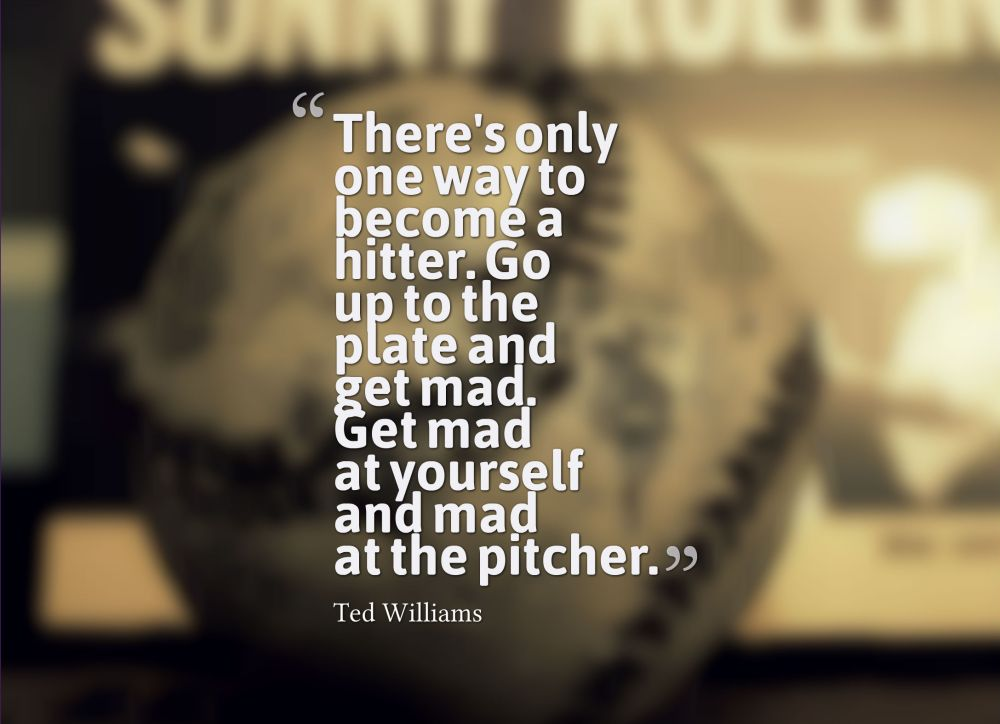 baseball ted