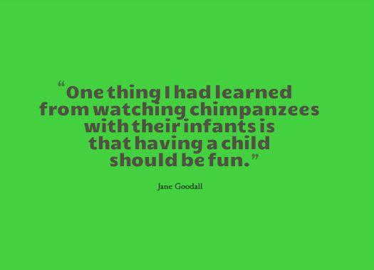 chimp quote