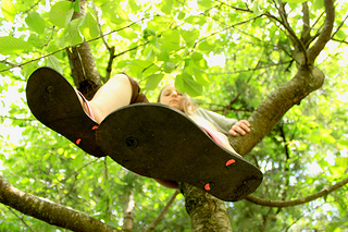 photo credit: danna (curious tangles) via photopin cc