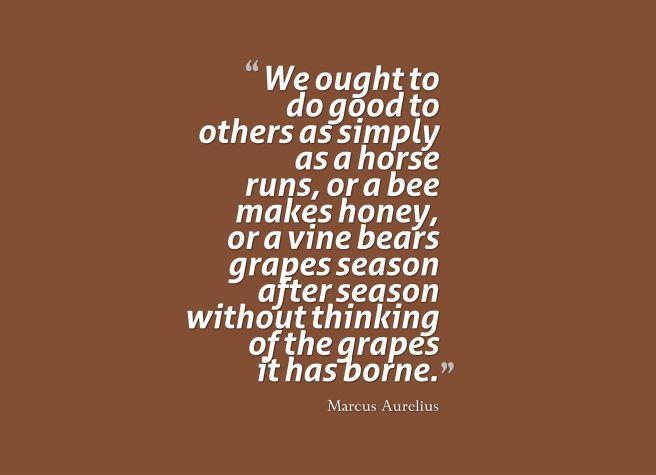 honey quote