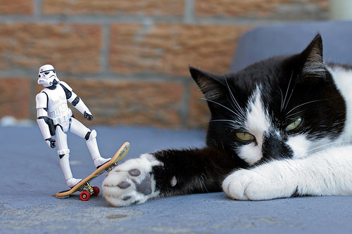 photo credit: Mr Peepers & Skateboarding Stormtrooper via photopin (license)