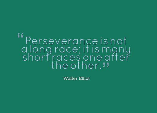 perseverance quote
