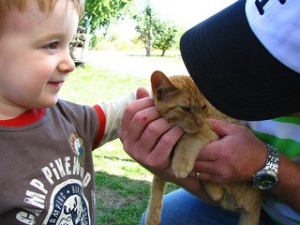 photo credit: Keegan meets Kitty via photopin (license)