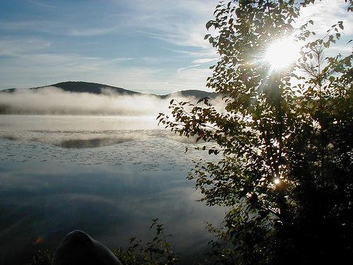 photo credit: Morning Fog via photopin (license)