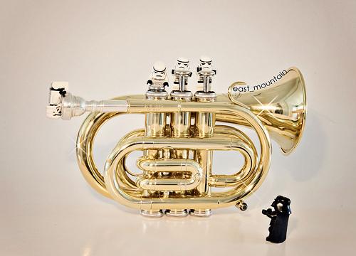 photo credit: Pocket-Trumpet_web via photopin (license)
