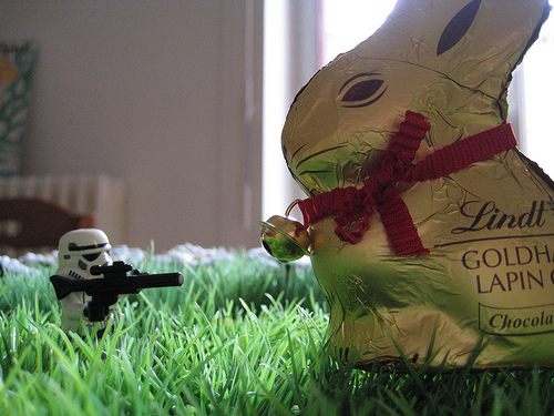 photo credit: Hunting Easter bunny. via photopin (license)