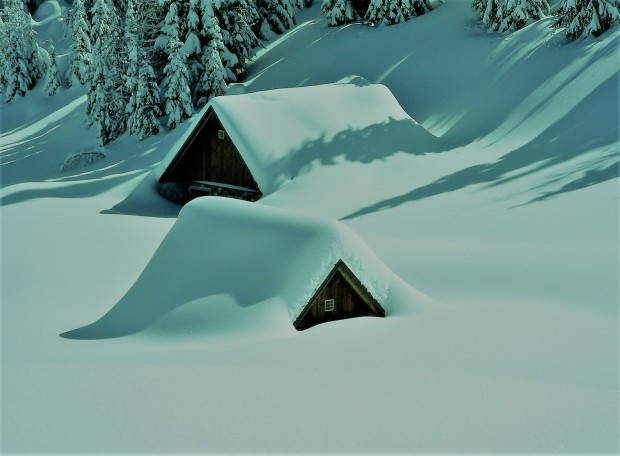 snow day houses