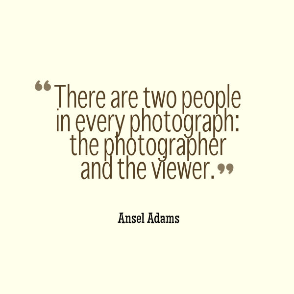 ansel quote