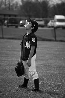 baseball bubble