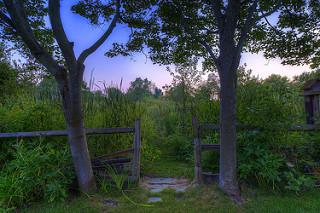photo credit: Mom's Back Yard via photopin (license)