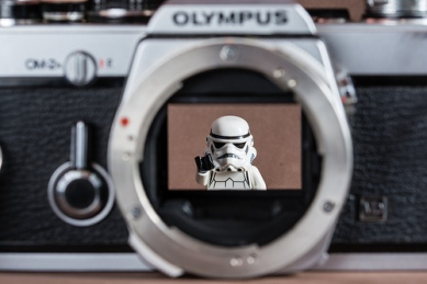 photo credit: Behind the Shutter via photopin (license)