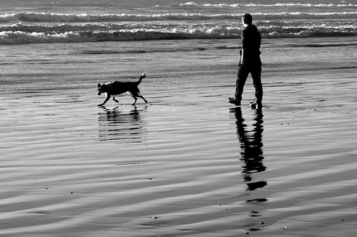 man with dog 6 words