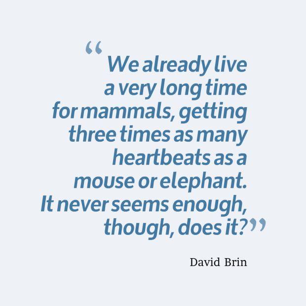 elephant life quote.jpg