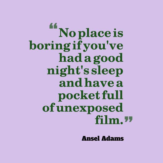 adams-quote