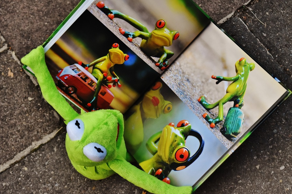 kermit photo book muppets
