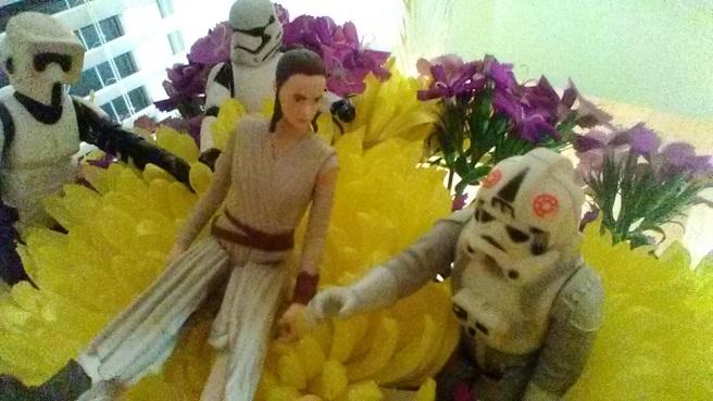stormtrooper flowers rae