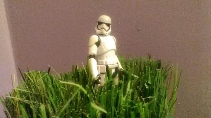 stormtrooper grass