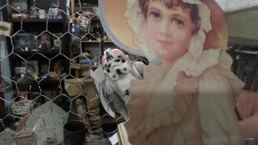 stormtrooper tie fighter pilot girl chicken wire