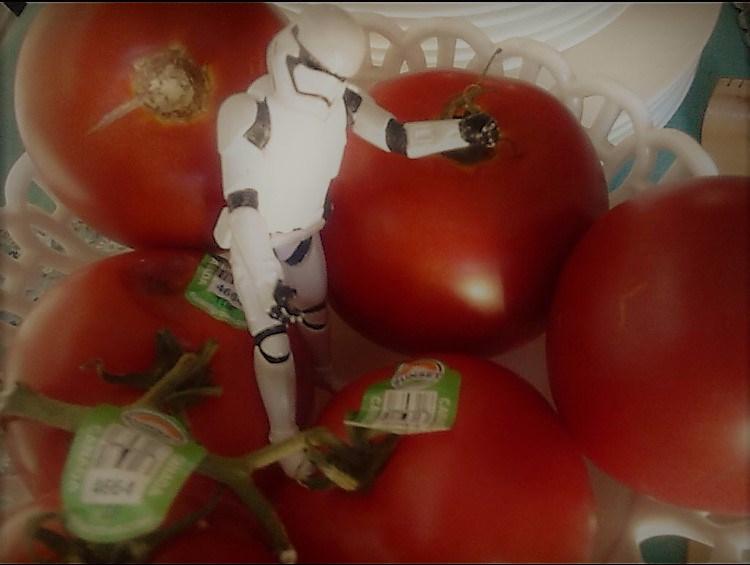 stormtrooper tomatoes