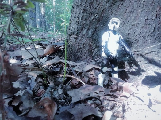 stormtrooper forest tree