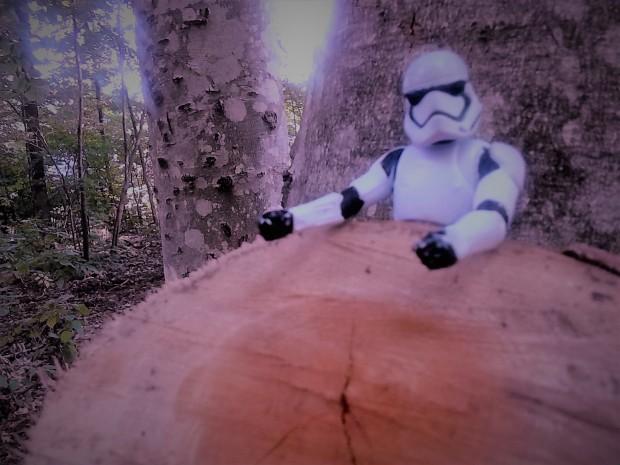 stormtrooper tree disc golf park
