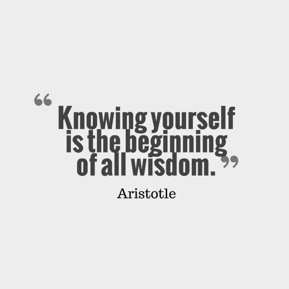 aristotle quote wisdom