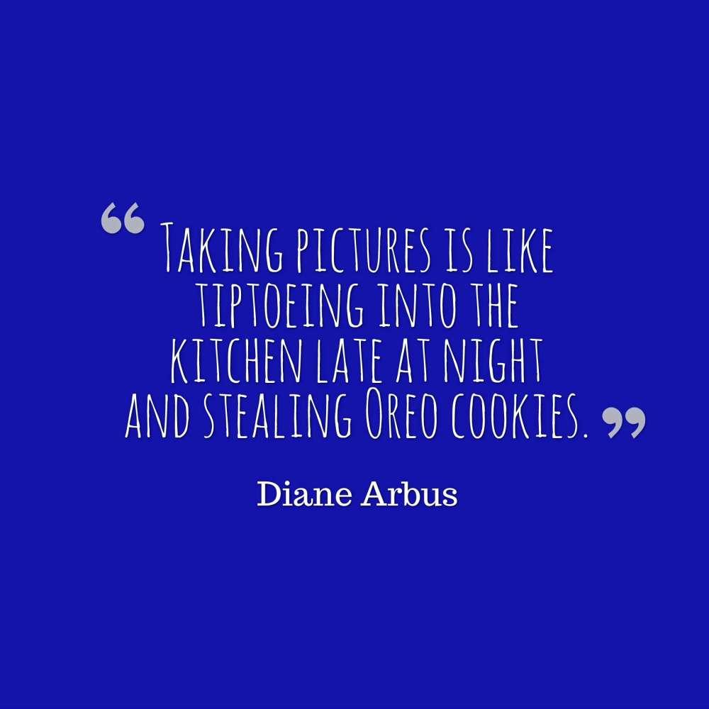 arbus quote photographs