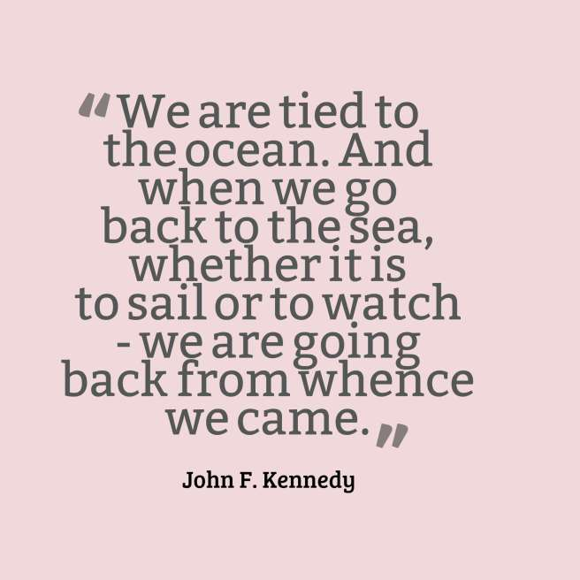 kennedy quote sailing