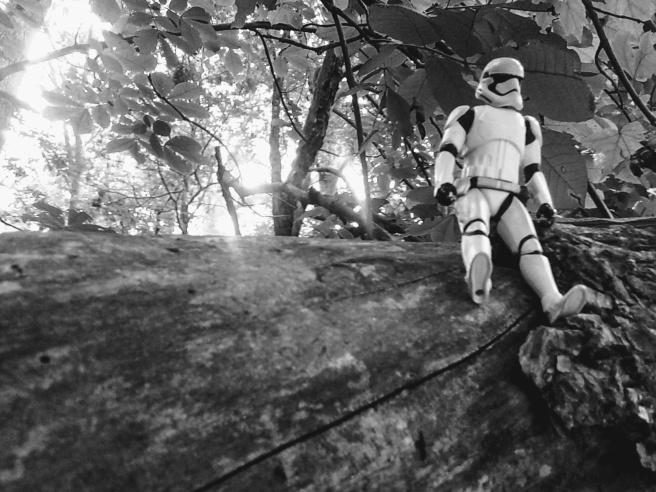 stormtrooper forest
