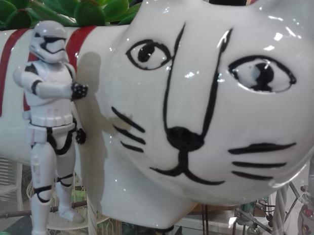 stormtrooper kitty