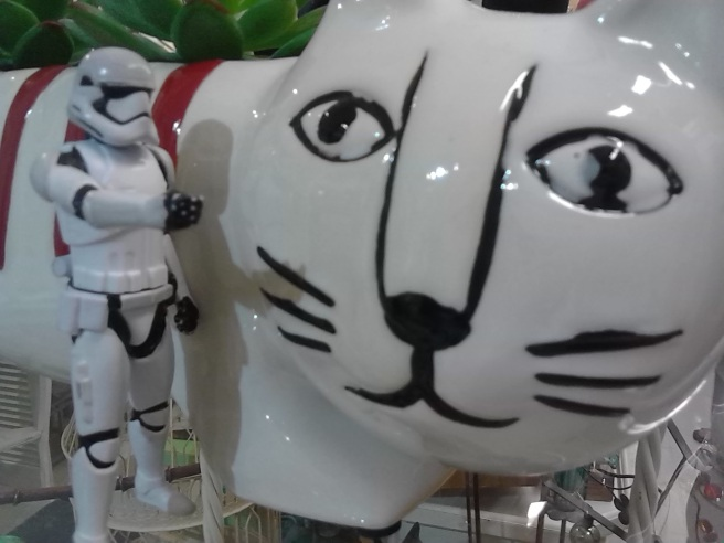 stormtrooper kitty