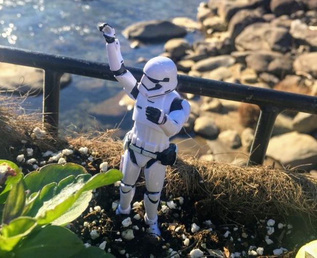 stormtrooper 3 feb because gatlinburg