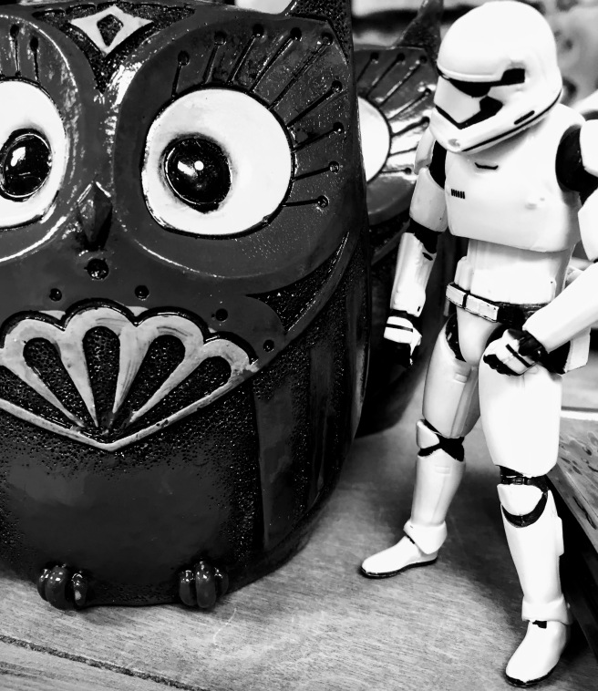 stormtrooper owl february coffee gatlinburg tn