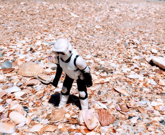 stormtrooper shells 0419 getaway jacksonville beach