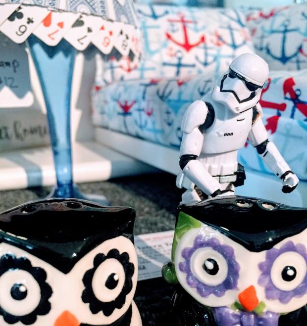 stormtrooper owls may 5 perusing monroe.JPG