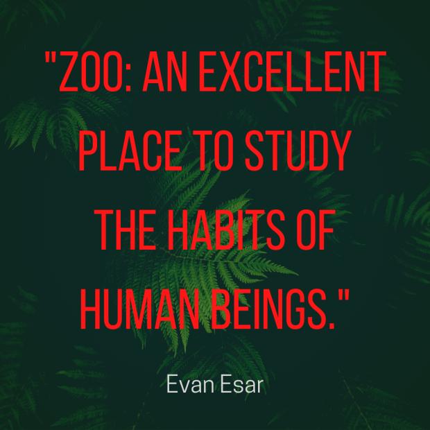 Esar quote zoo