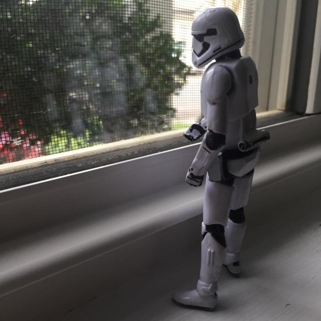 stormtrooper window april 5 quarantine silverwood