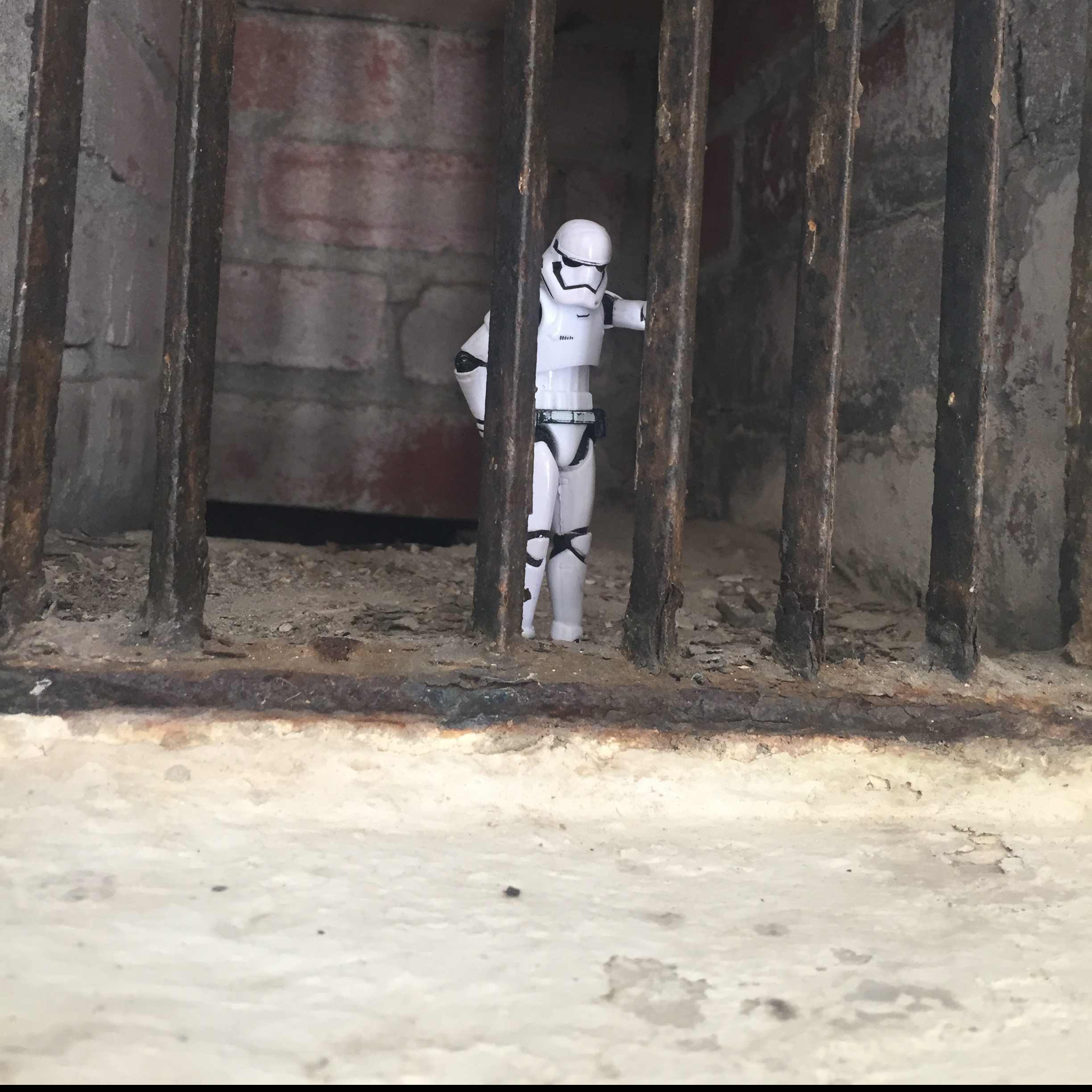 stormtrooper bars summer opp brookdale gardens